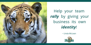 benefits of a business identity