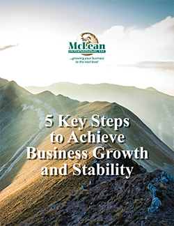 Cover of Free Report: 5 Key Steps to Achieve Business Growth and Stability