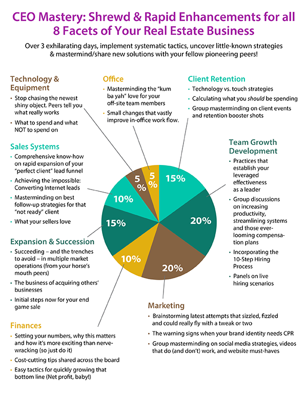 CEO Mastery From McLean International Infographic
